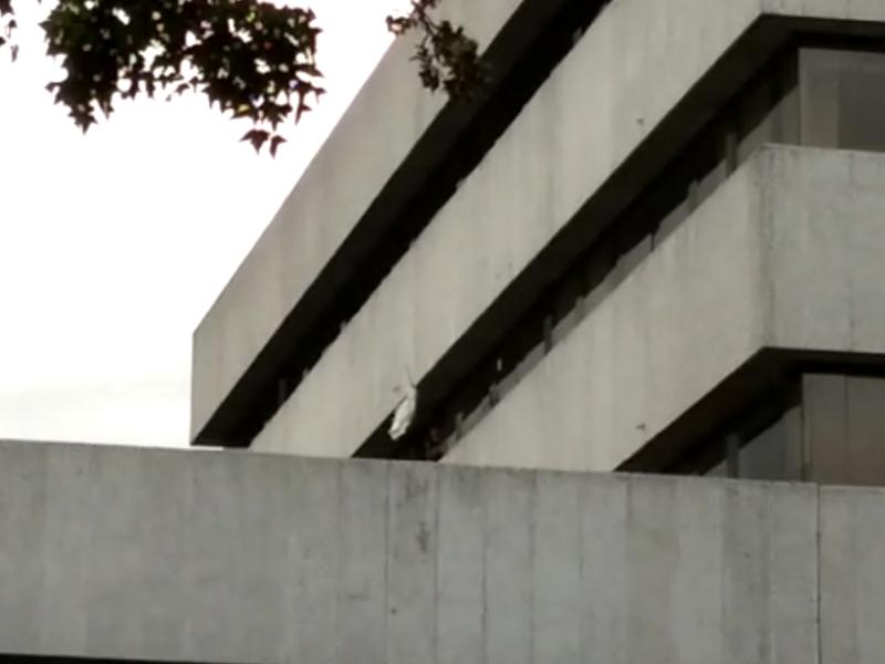 La ADE se tomó la Secretaría de Educación y exige a Peñalosa atender problemas educativos de Bogotá