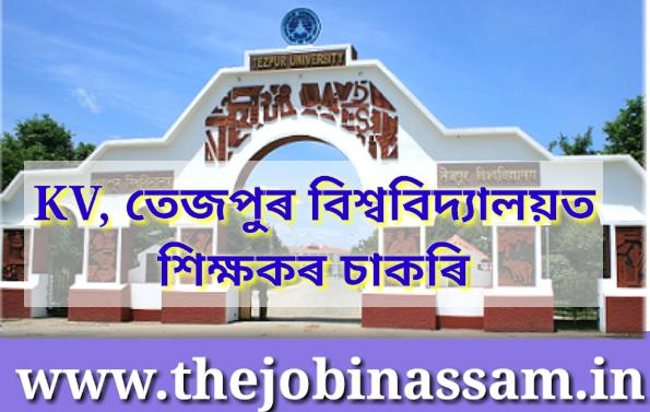 KV, Tezpur University Recruitment 2019