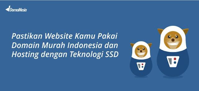 DomaiNesia Domain Indonesia