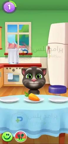 اطعام القط المتكلم