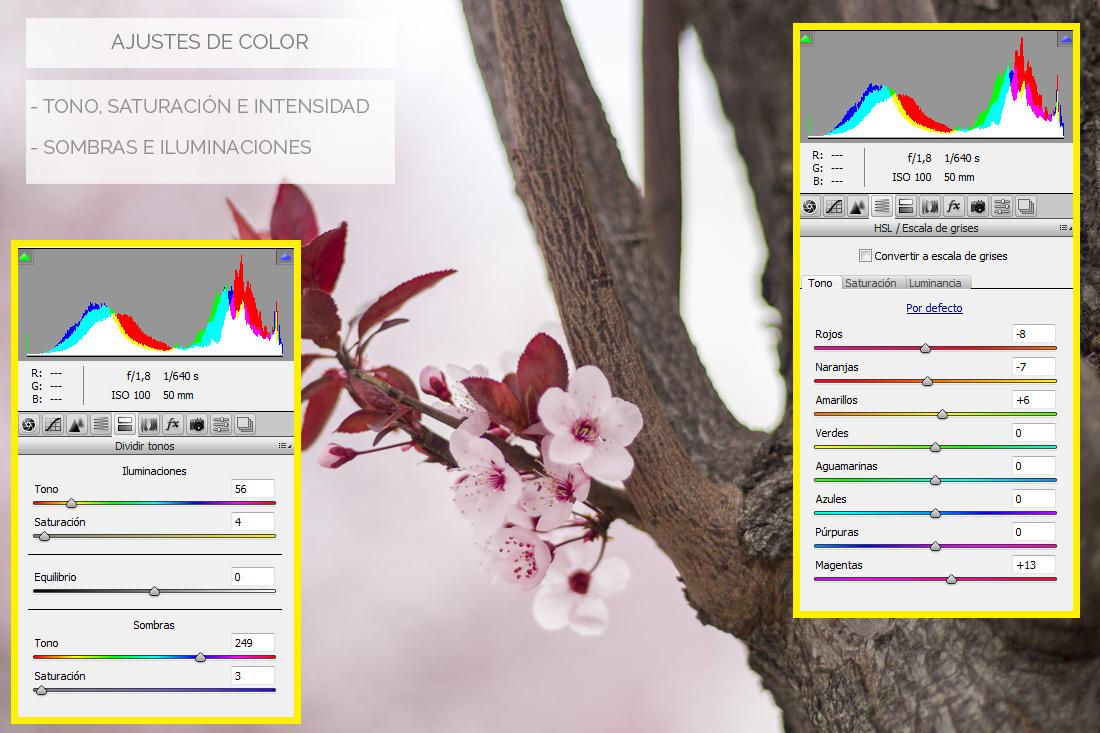 mejora fotografías edición digital