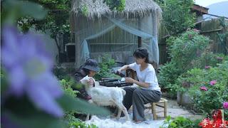 Li Ziqi nhận ra rằng cô đã dành quá nhiều thời gian cho việc tạo nội dung và dự định bắt kịp lĩnh vực giáo dục.
