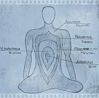 wiki alimente recomandate in practica mindfulness