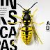 [VÍDEOS] A FÁBRICA DE VESPAS - PRIMEIRAS IMPRESSÕES