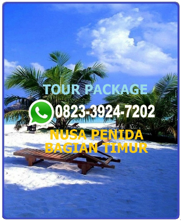 Nusa Penida Tour Price 2