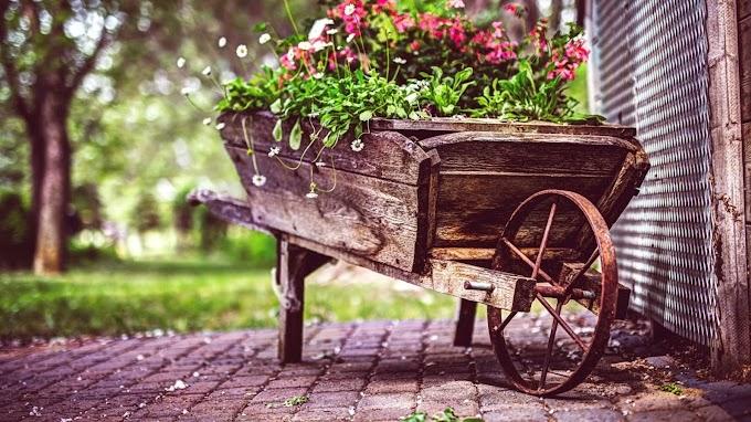 Vintage Carro de Flores