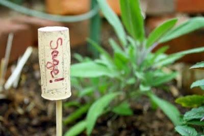 http://eatdrinkbetter.com/2012/03/14/diy-plant-markers/