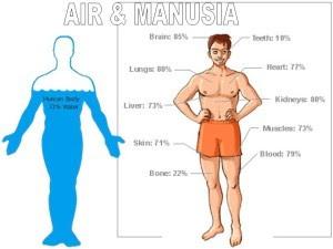 5 BAHAYA KURANG MINUM AIR PUTIH BAGI KESEHATAN ANDA