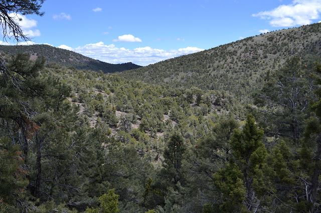 random valley on Bald Mountain