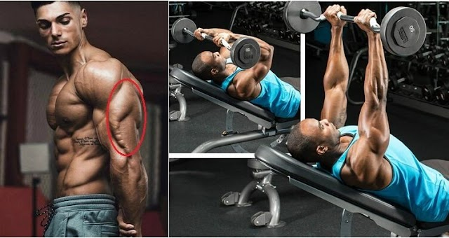 Best Triceps Workouts