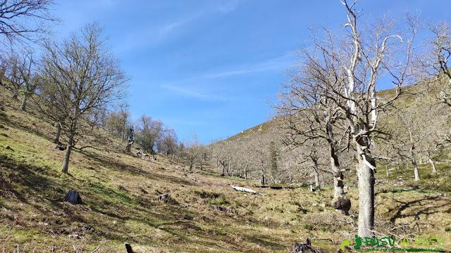 Zona alta del Valle de Piedrafita