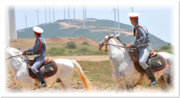 بقمية 1,5 مليار درهم.. المغرب يشرع في إحداث مزرعة ريحية لانتاج الطاقة بتازة