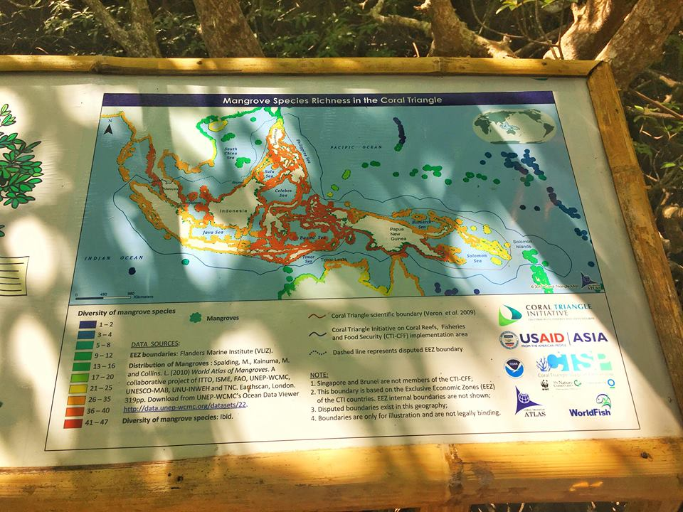 puerto galera mangrove site hours of operation