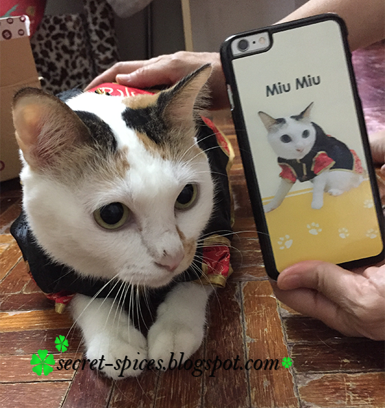 Personalized handphone casing in Malaysia