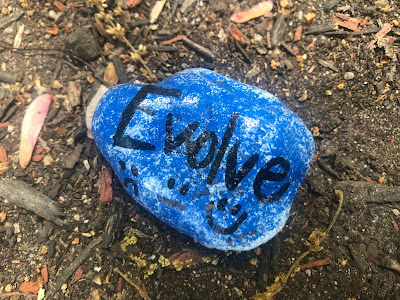 """Rock with painted message: """"Evolve"""""""