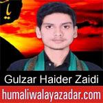 https://humaliwalaazadar.blogspot.com/2019/08/gulzar-haider-zaidi-nohay-2020.html