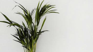 10 trucos para decorar tu hogar en invierno por menos de 100€