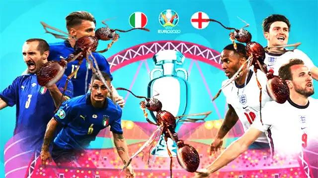 خبر عاجل... سرب من النمل الطائر قد يأجل نهائي كأس أوروبا بين إنجلترا وإيطاليا