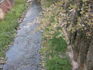 石神井公園までの道のり