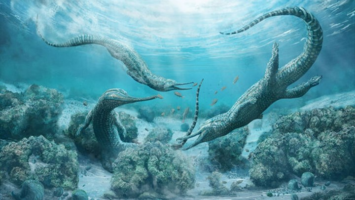 Θαλάσσιο «τέρας» μεγέθους αυτοκινήτου ανακαλύφθηκε στις Αυστριακές Άλπεις
