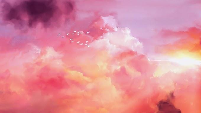 Céu, Rosado, Nuvens, Rosa, Pássaros