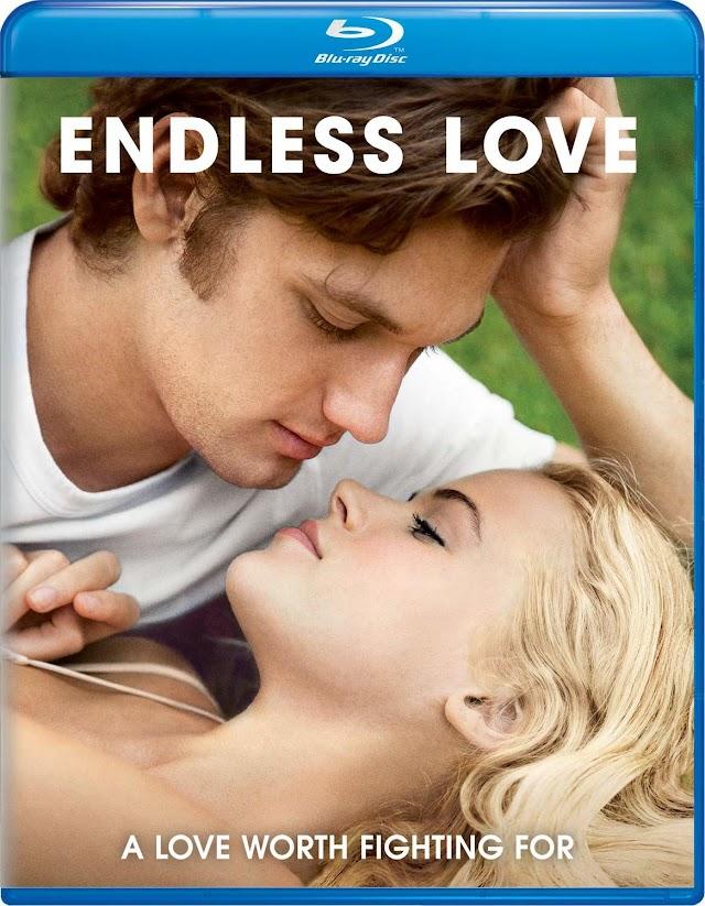 Endless Love 2014 x264 720p Esub BluRay Dual Audio English Hindi THE GOPI SAHI