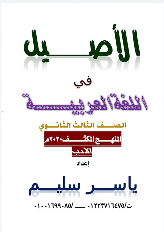 تلخيص الأدب في ١٠ ورقات لثالثة ثانوي وأهم الأسئلة المتوقعة في٢٠٢٠ أ/ ياسر سليم 12