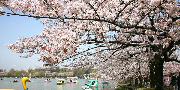 Taman Ueno