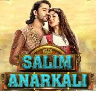 4 Fakta Unik Serial India Salim Anarkali