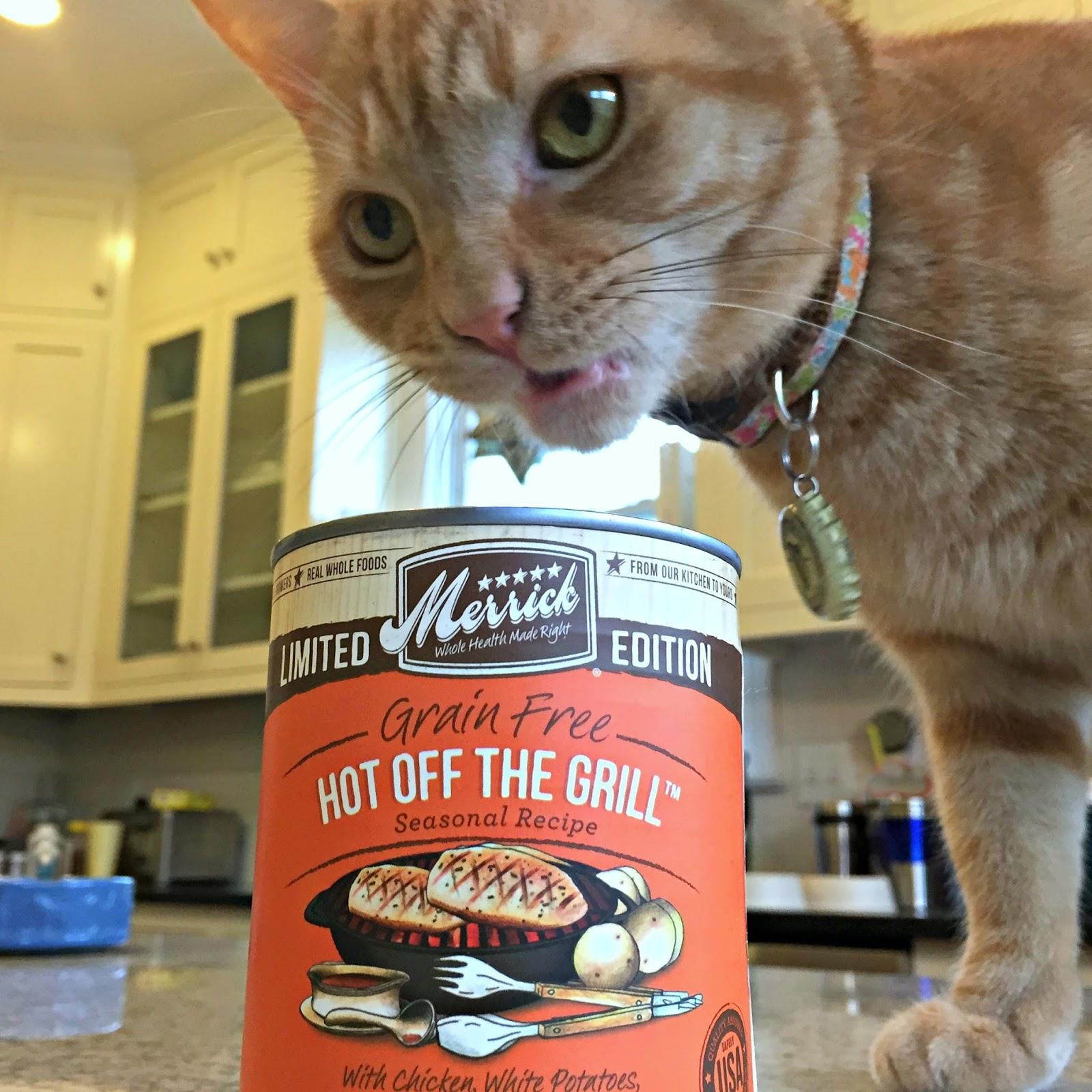 Merrick Cat Food Coupons Printable