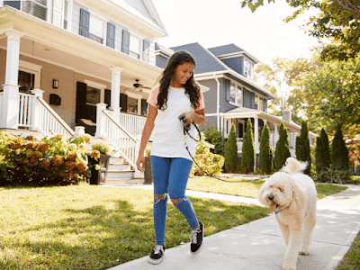 Challenge Your Dog running errands with him
