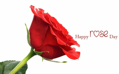 rose day my friend