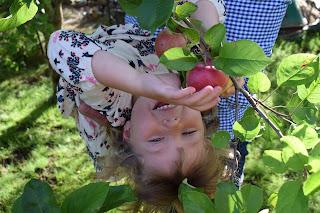 Den Garten genießen. Foto: Jenny Frankzen, pixabay.com