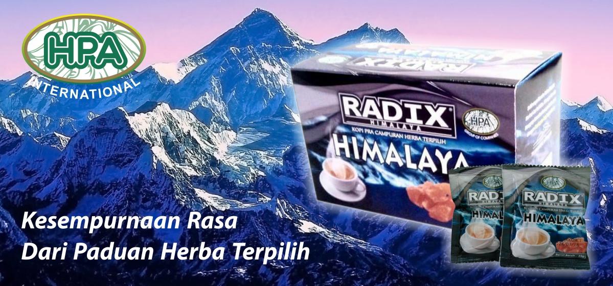 Hasil gambar untuk radix himalaya