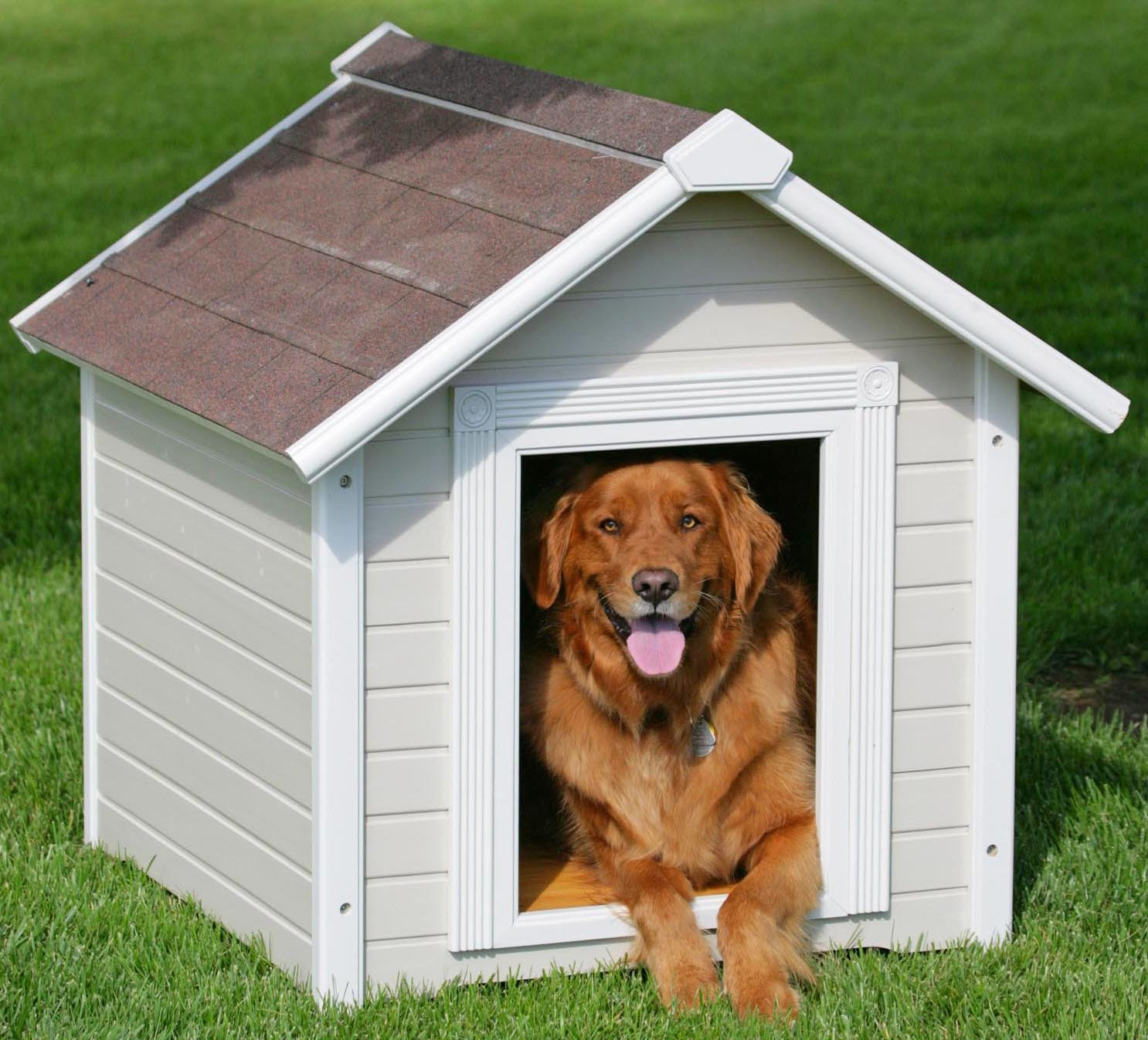 Home Design Ideas For Dogs:  Dog House Designs