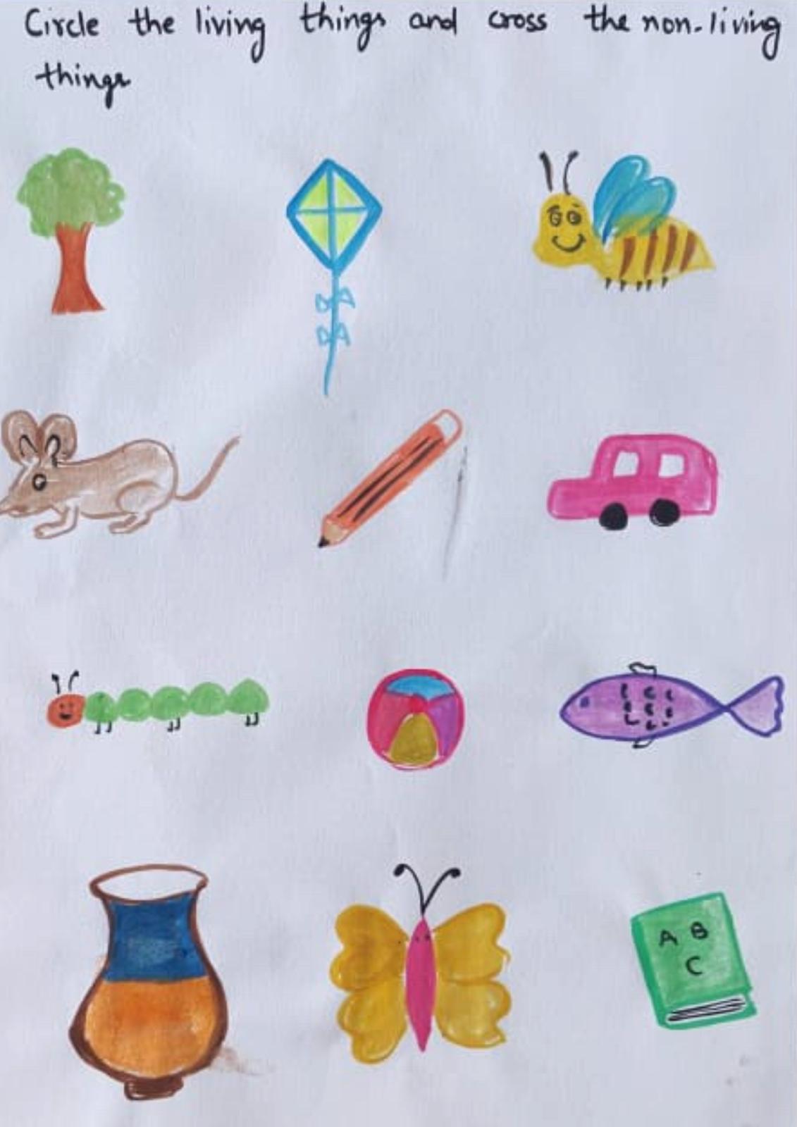 Evs Worksheets For Nursery Lkg Amp Ukg 3 5 Years Old