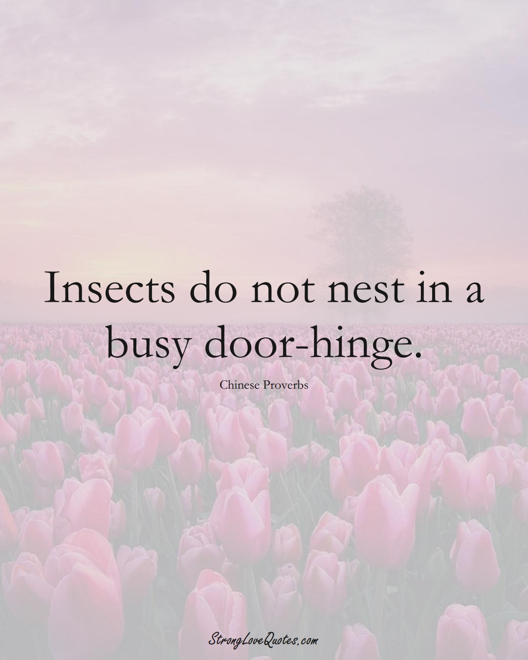 Insects do not nest in a busy door-hinge. (Chinese Sayings);  #AsianSayings