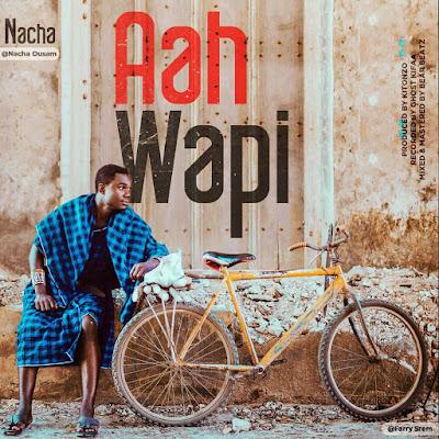 AUDIO | Nacha - Aah Wapi | Mp3 Download [New Song]