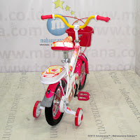 12 Exotic 9911 Mini Kids Bike