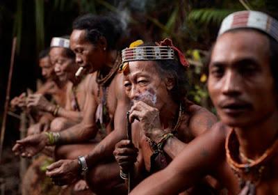 Suku Sakai, Suku Primitif di Indonesia yang Terancam Punah