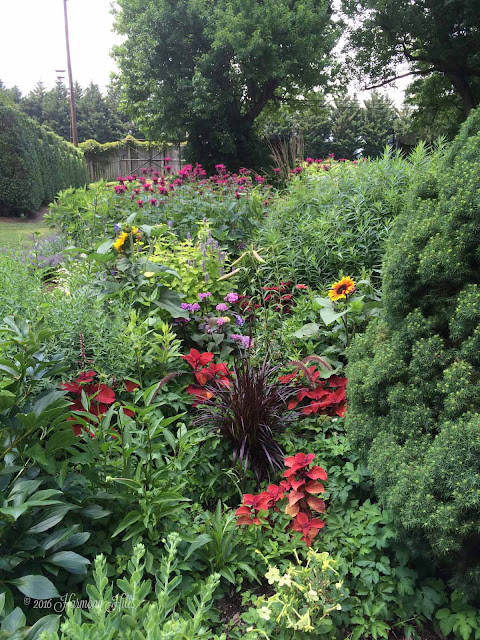 Kgk Gardening Landscape: Harmony Hills Home And Garden