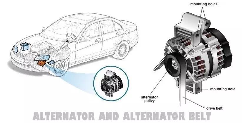Car alternator and alternator belt
