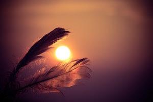 kemanakah-matahari-terbenam