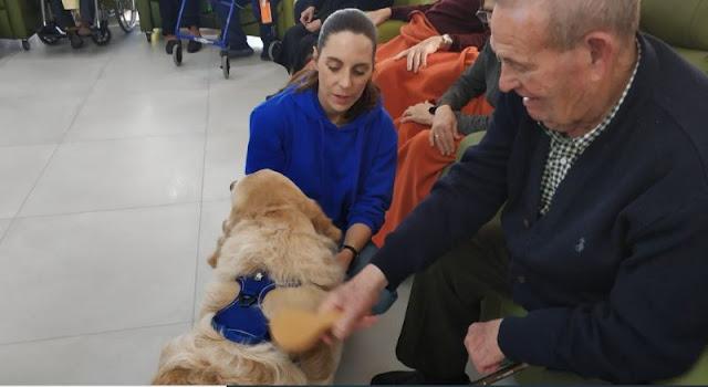 terapia con perros hogaresmd