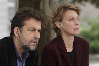 Cinéma, les sorties DVD : Mia Madre, Oups j'ai raté l'arche, The Lobster - Par Didier Flori et Caroline