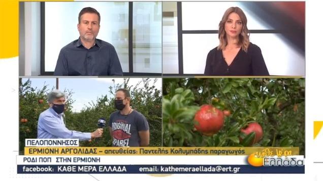 Τα ρόδια ΠΟΠ από την Ερμιόνη Αργολίδας στην ΕΡΤ (βίντεο)