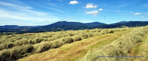 Regards et Vie d'Auvergne