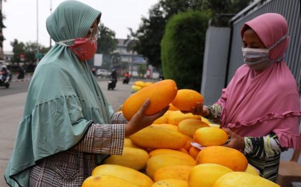 gambar buah timun siri makanan khas ramadan di aceh