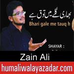 https://humaliwalaazadar.blogspot.com/2019/09/zain-ali-nohay-2020.html