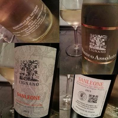 bianchello del metauro vino